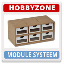 Hobby Zone Module Systeem