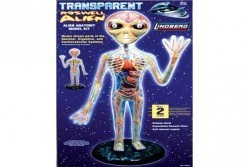 Transparante Roswell Alien