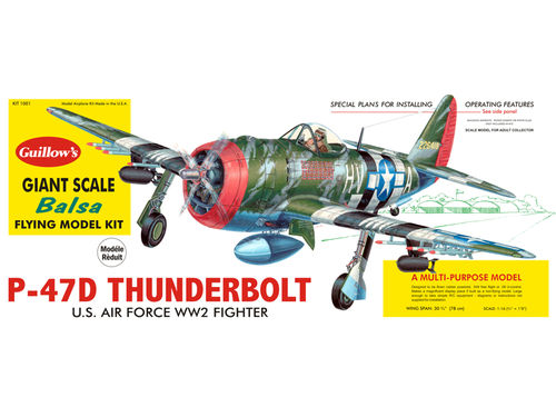 Republic P-47D Thunderbolt 1/16