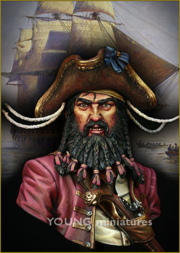 Black Beard 1718 Queen Annes Revenge  1/10